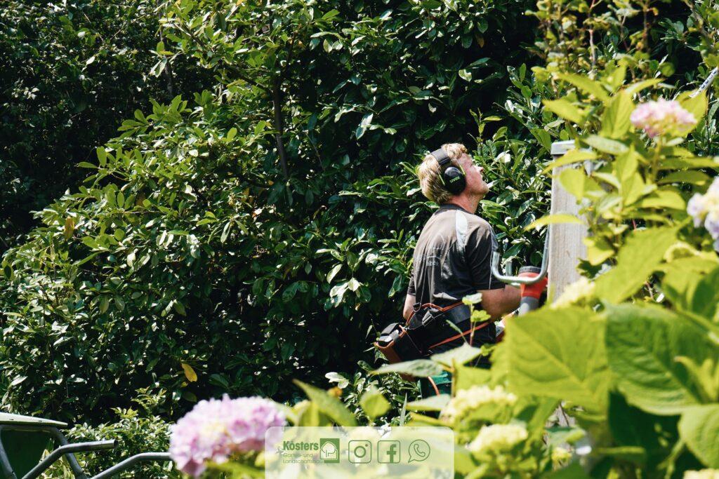 Gartenpflege-6
